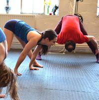 Maximum Flexibility Course 8 weeks 80