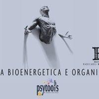 Pratica bioenergetica e organismica