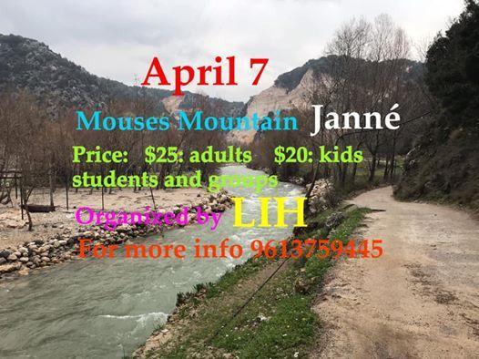 Mouses Mountain - Jann
