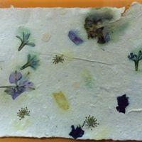 Environmentally Conscious Printmaking with Zeina