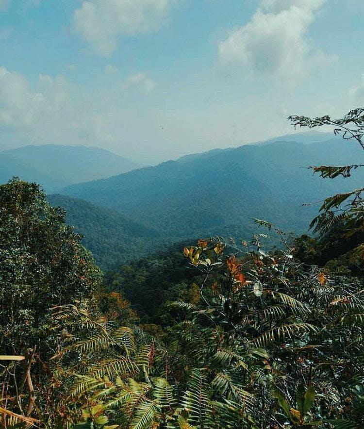 Trans Gunung Angsi (825m) Hike