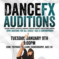 Dancefx Company Auditions