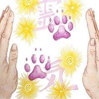 Curso de Reiki Nvel I - Direcionado para Animais