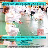 Seminarium Egzaminacyjne EFYA dla dzieci