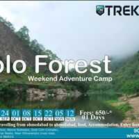 Polo Forest weekend Adventure Camp