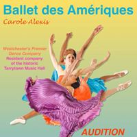 Audition company and trainee positions