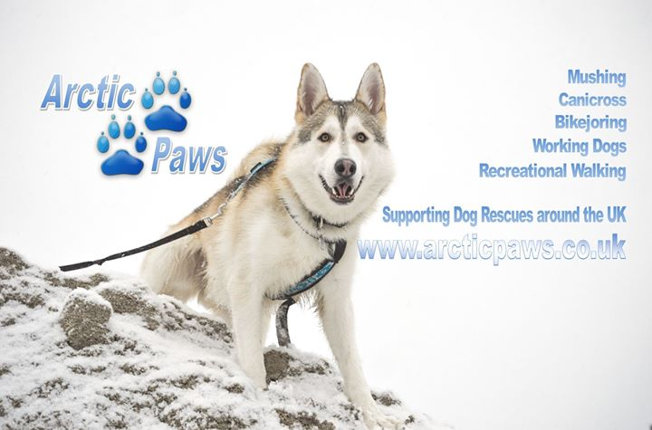 Arctic Paws will be at BSA - FUN Weekend 2017