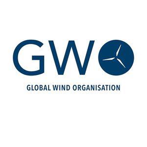Curs GWO - Iulie 2019