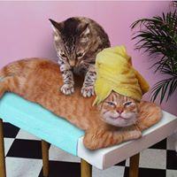 You want a massage (Massage workshop met RAb30)