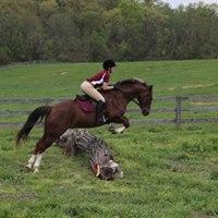Twilight Schooling Carrollton Hounds Hunter Pace Course
