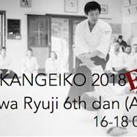 Kangeiko 2018 with Shirakawa Ryuji 6th dan (Aikikai)