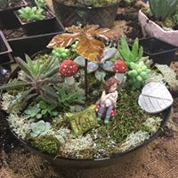 Fairy Garden Workshop 230pm