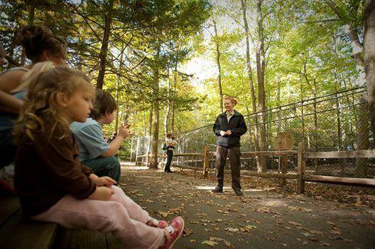 program Tennessee naturalist