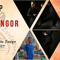 Weekend de Tango cu Kicsi Csongor la Arad