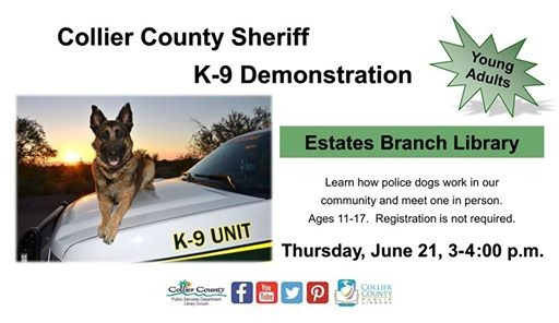 Collier County Sheriff K 9 Demonstration Florida