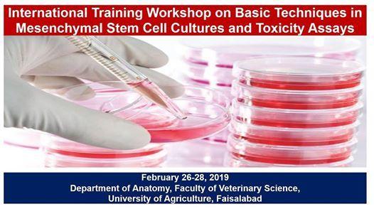 International Training Workshop on Stem Cell