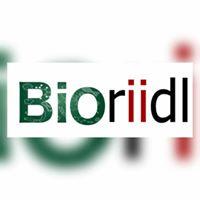 BioRiiDL- DIY