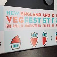 New England VegFest Flyering Day - Providence
