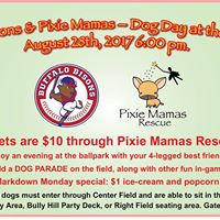 Bisons Baseball &amp Pixie Mamas Rescue