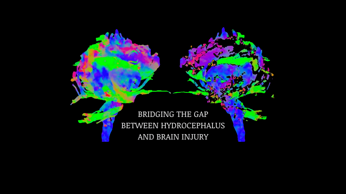The Symposium on Approaches to Hydrocephalus and Brain Injury