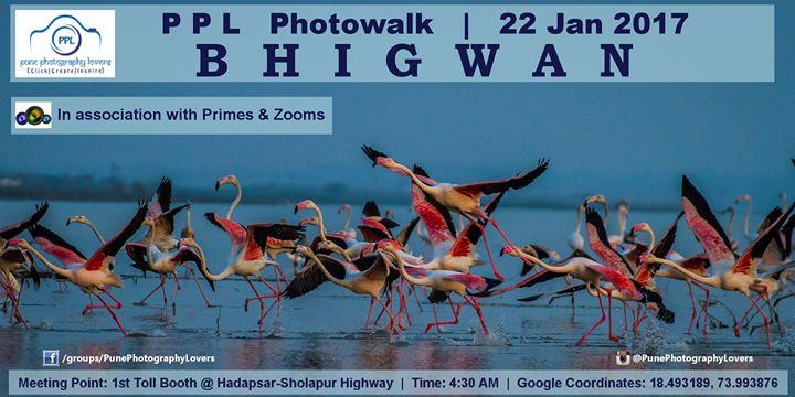 PPL Free Photowalk - Bhigwan - 22nd Jan 2017