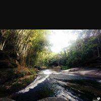 S.A.N.A-RJ Primitivos Trips