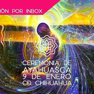 Cusco Ayahuasca events in the City  Top Upcoming Events for Cusco