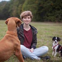 Was knnen wir von wildlebenden Hunden lernen