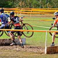 Across the Beeriers GACX Finals