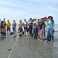 Become a citizen scientist Skagit County training