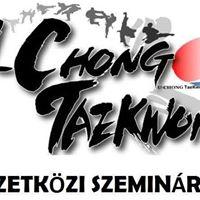 3. U-Chong Nemzetkzi Taekwondo Szeminrium