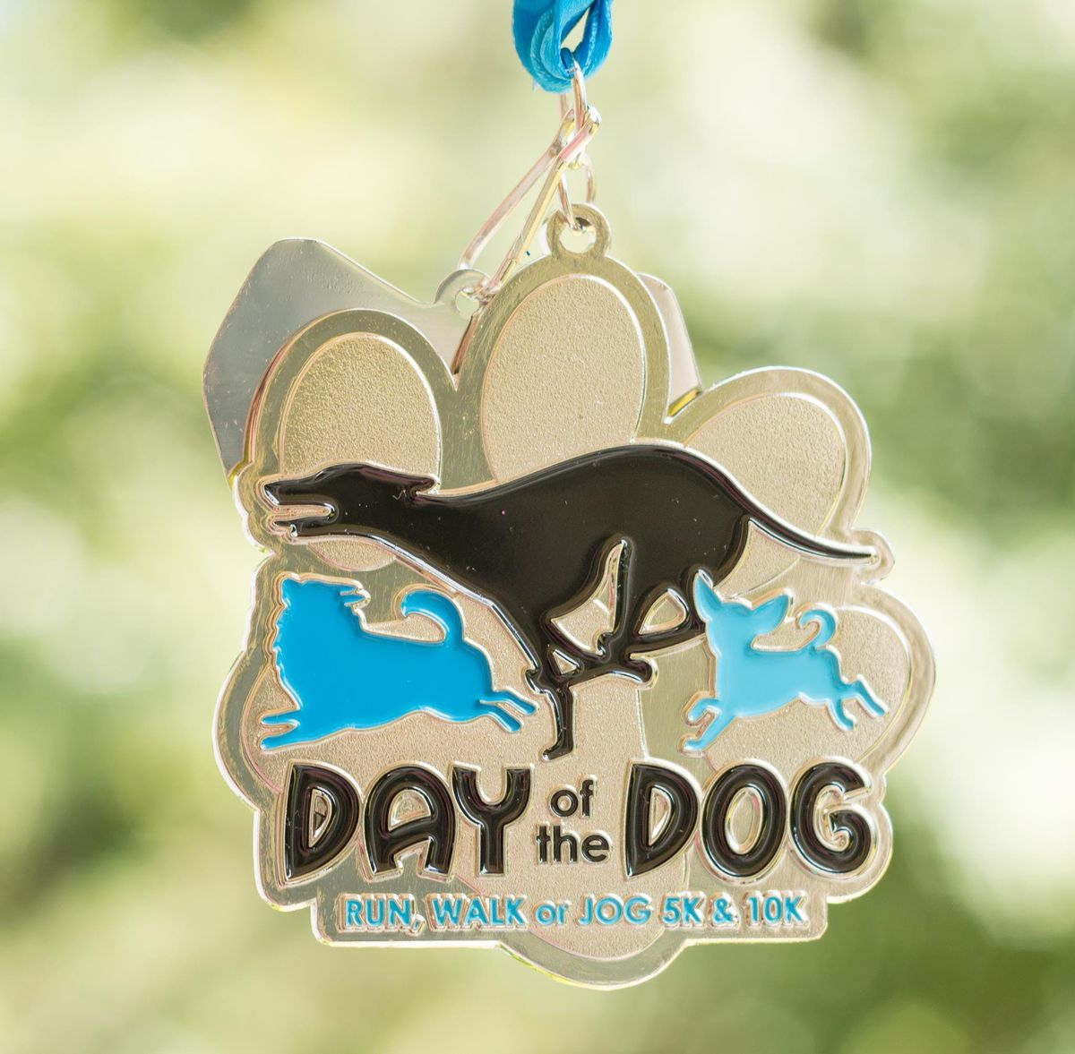 Now Only 14 Day of the Dog Run Walk or Jog 5K & 10K -Austin
