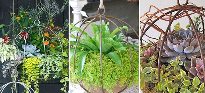 Hanging Orbs For Your Summer Garden