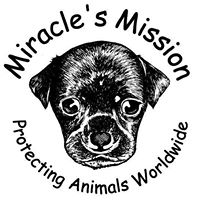 Miracle's Mission