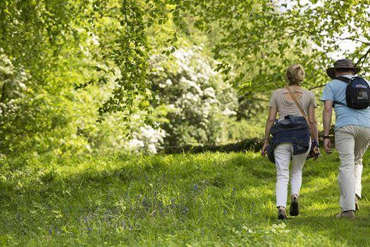 Seasonal boundary walks