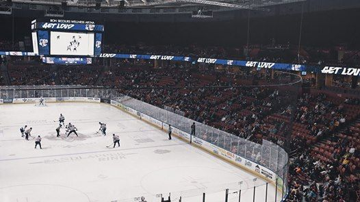 Swamp Rabbits vs. Icemen