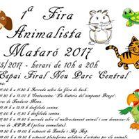 1 Fira Animalista Matar 2017