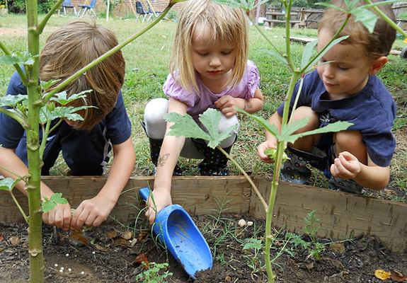 Little Sapling Series for Toddlers (Ages 2-5) & Parents