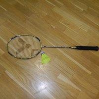 Badminton - singly