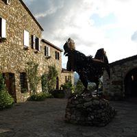 La Dolce Vita - Italian Wine Class and Tasting