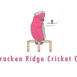 Round 4 - Valley Vs Bracken Ridge