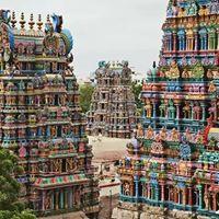Excl for Senior citizens &amp 50 Tamil Nadu Tour 7D6N 23-29 Jan