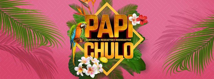 Papi Chulo  Hasselt
