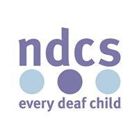 NDCS Deaf Friendly Swimming Gala