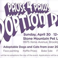 Pause 4 Paws Adoption Day