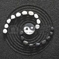 Hatha Yoga Intensive - Module 3 Skillful Action Yoga Immersion