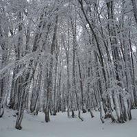 Raquettes  neige dans le Val dAzun