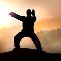 Tai Chi Boxing  Wudang System (Practical Tai Chi Chuan)