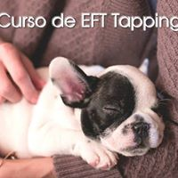 Curso de EFT Tapping para Animales Online