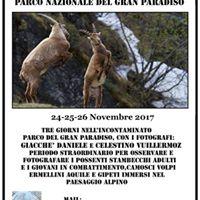 Workshop fotografico al Parco Nazionale del Gran Paradiso